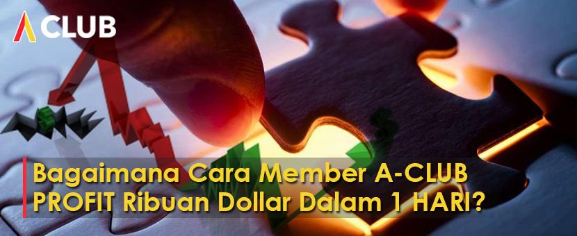 Bagaimana cara member ACLUB profit ribuan dollar dalam 1 hari?